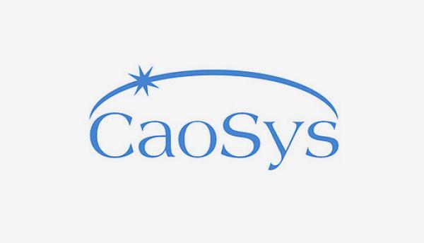 p-Caosys